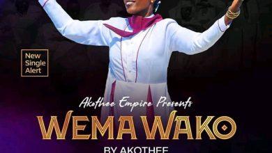 Download Audio | Akothee – Wema Wako