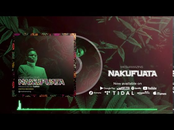 Download Audio | MeshAmazing – Nakufuata
