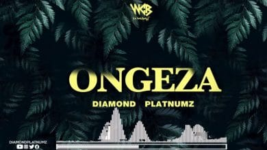 Download Audio | Diamond Platnumz – Ongeza