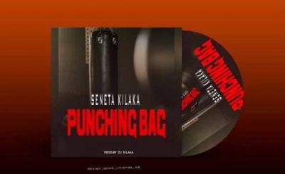 Download Audio   Seneta Kilaka – Punching Bag