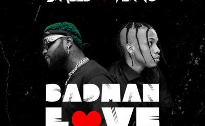 Download Audio | Skales ft Tekno – Badman Love (Remix)