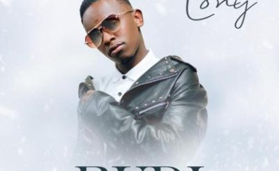 Download Audio | Lony Music – Rudii