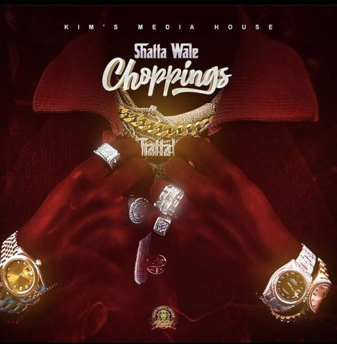 Download Audio by Shatta Wale – Choppings