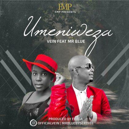 Download Audio by Vein ft Mr Blue – Umeniweza