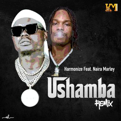 Download Audio by Harmonize ft Naira Marley – Ushamba Remix