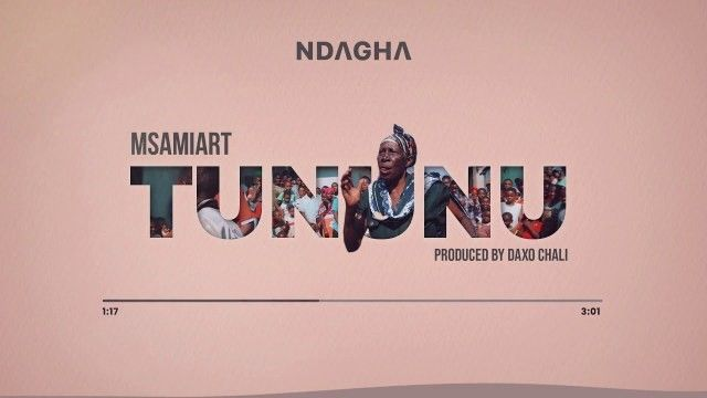 Download Audio by Msamiart – Tununu