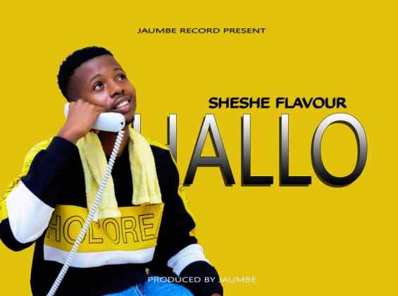 Download Audio by Sheshe Flavour – Hallo