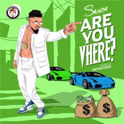 Download Audio by Skiibii – Are you Where ?