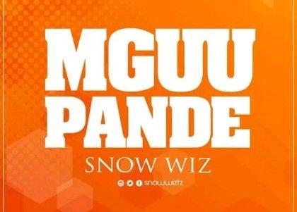 Download Audio by Snow Wiz – Mguu Pande