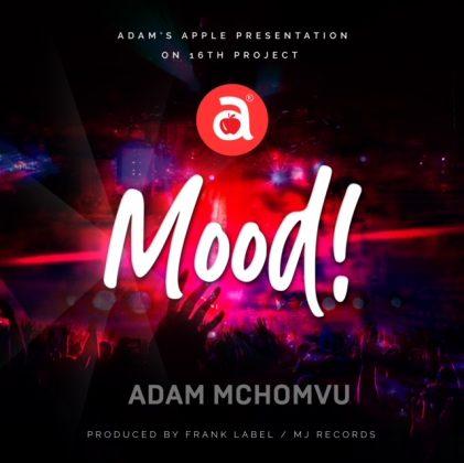 Download Audio by Adam Mchomvu ft Dibo – Mood
