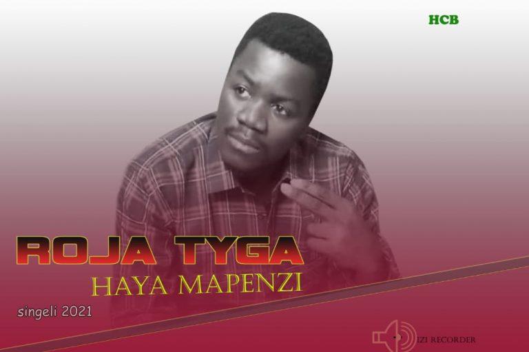 Download Audio by Roja Tyga – Haya Mapenzi (Singeli)