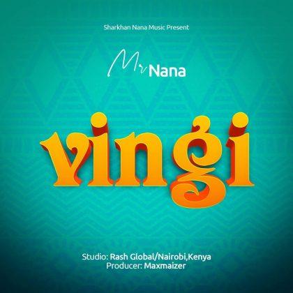 Download Audio by Mr Nana – Vingi