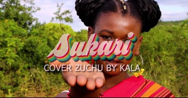 Download Video by Kala from Comores – Sukari ( Zuchu Cover)