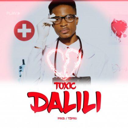 Download Audio by Toxic -Dalili