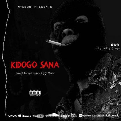 Download Audio by Jingo – Kidogo Sana