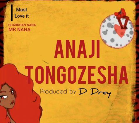 Download Audio by Mr Nana – Anajitongozesha