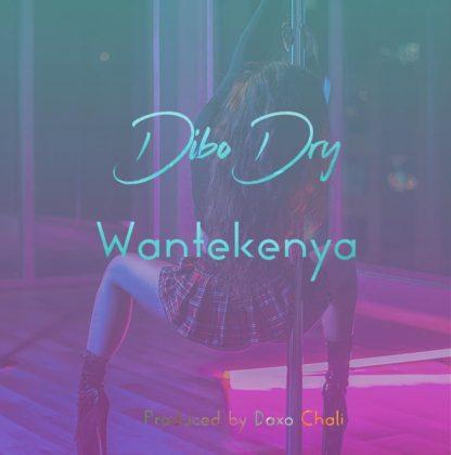 Download Audio by Dibo Dry – Wantekenya