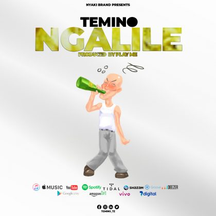 Download Audio by Temino – Ngalile