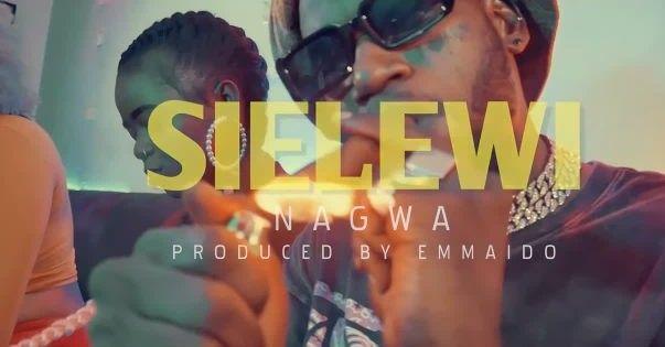Download Video by Nagwa – Sielewi